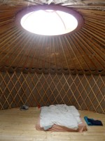 http://www.passiveactivism.net/files/gimgs/th-24_11yurt-at-uferstudios-berlin_larsschmidt.jpg